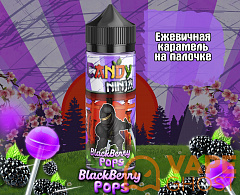 Жидкость Candy Ninja Blackberry Pops 120 мл